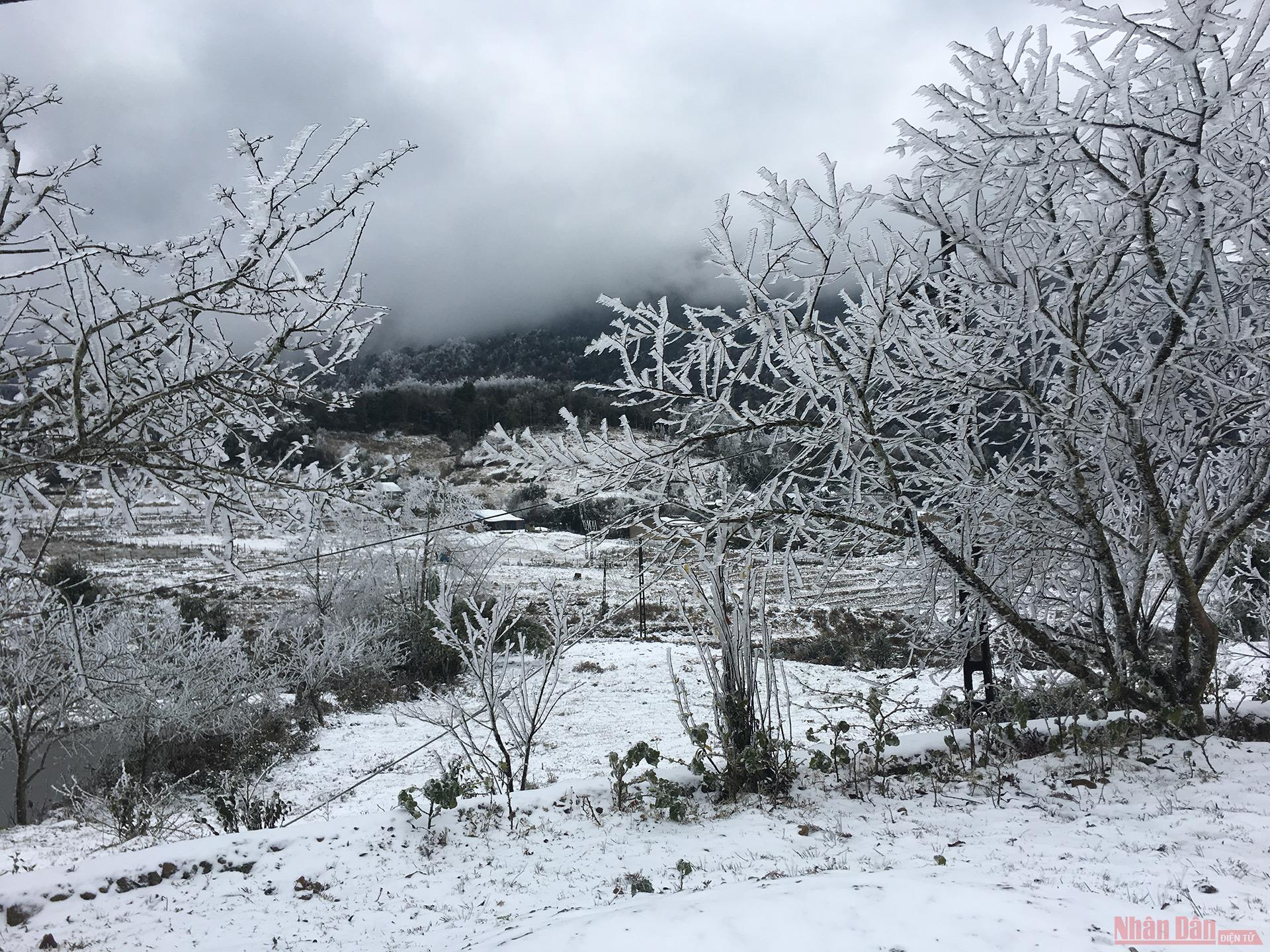 Northern Vietnam mountains engulfed in white snow