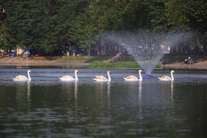 hanoi mulls opening walking space around thien quang lake