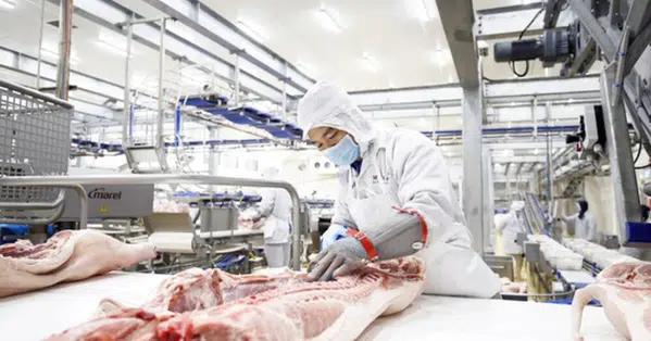 Russian firm plans to build US$1.4 billion pork-processing complex in Vietnam