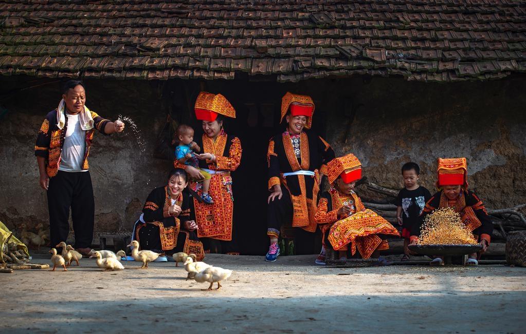 The spring beauty across Vietnam homeland