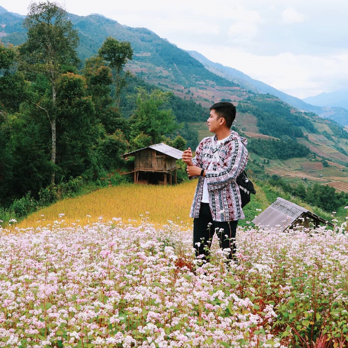 Flower season across Vietnam under the lens of local photographer