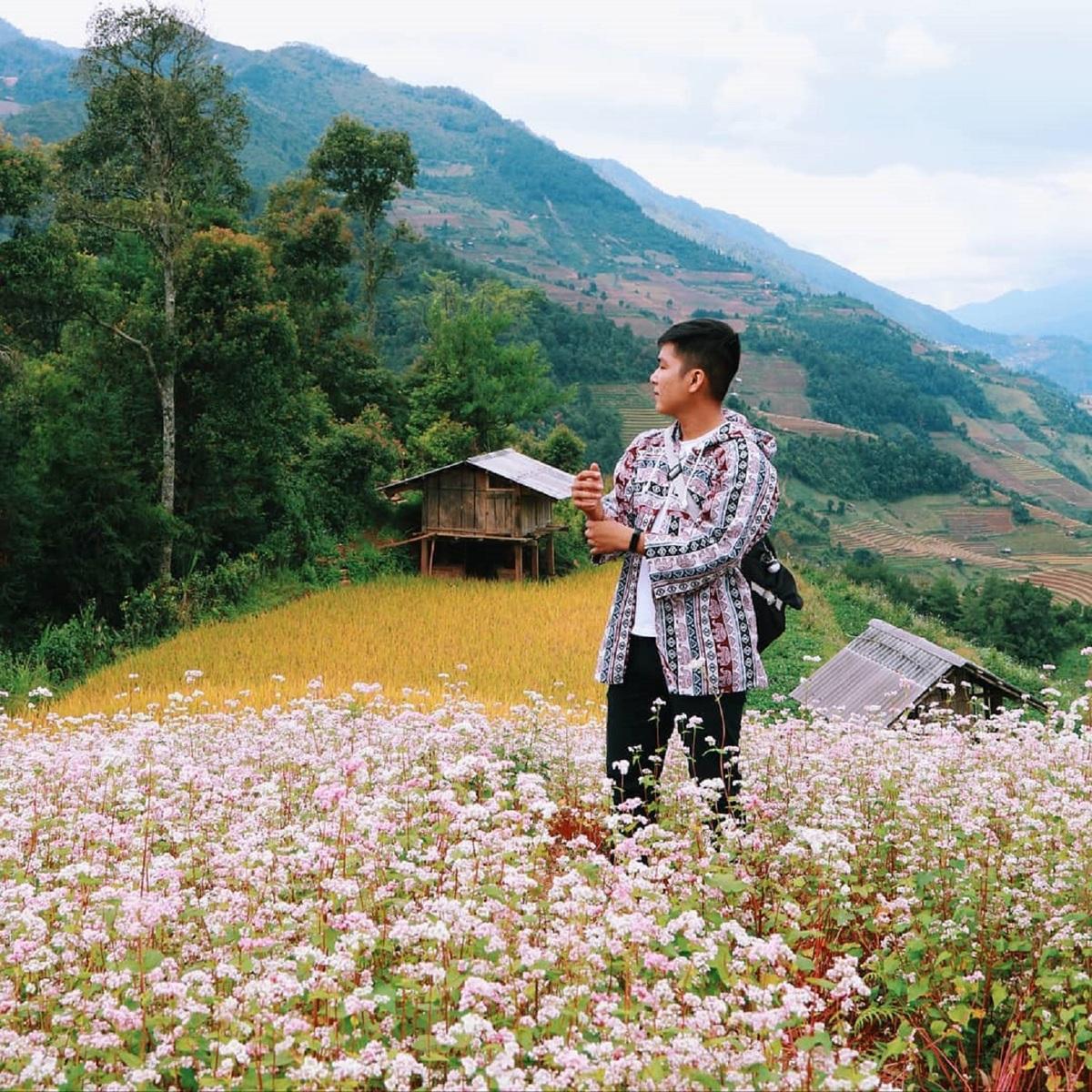 flower season across vietnam under the lens of local photographer