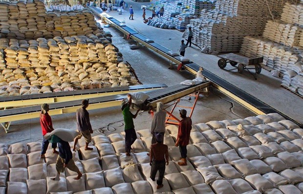 vietnam exports 638000 tonnes of rice in the first two months
