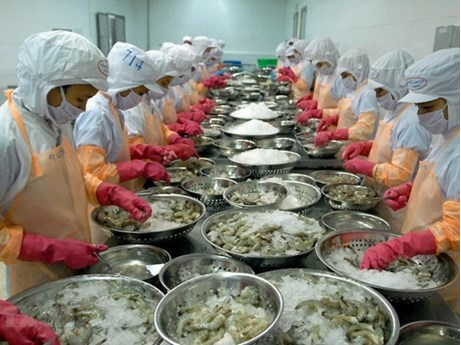 vietnam becomes the fourth largest seafood exporter to japan