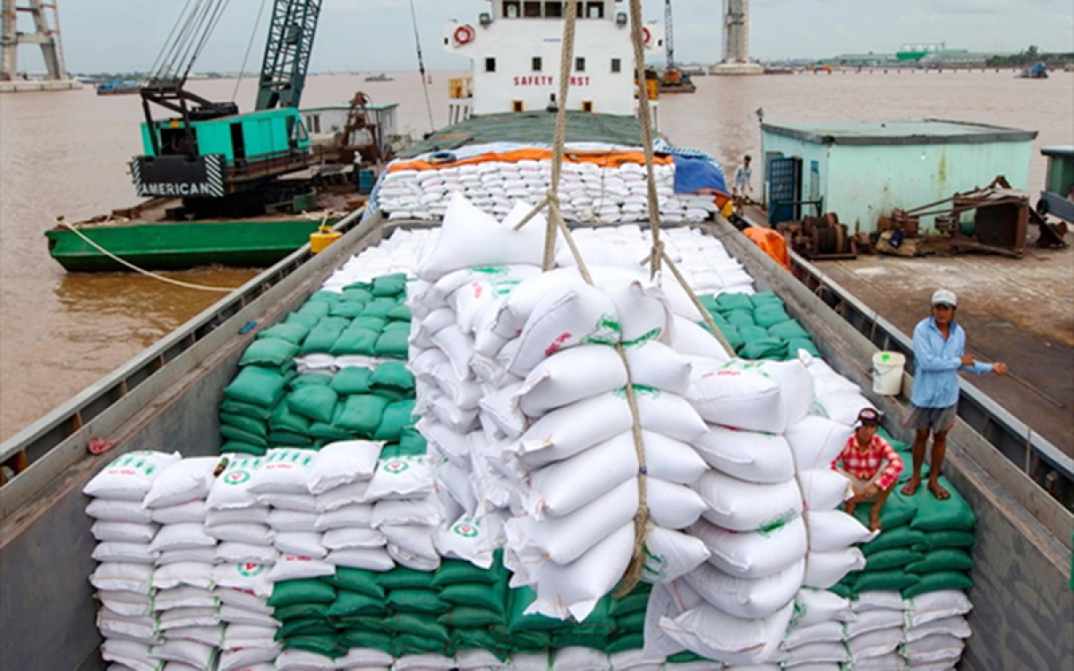 Vietnam's rice exports to Thailand enjoy sharp increase