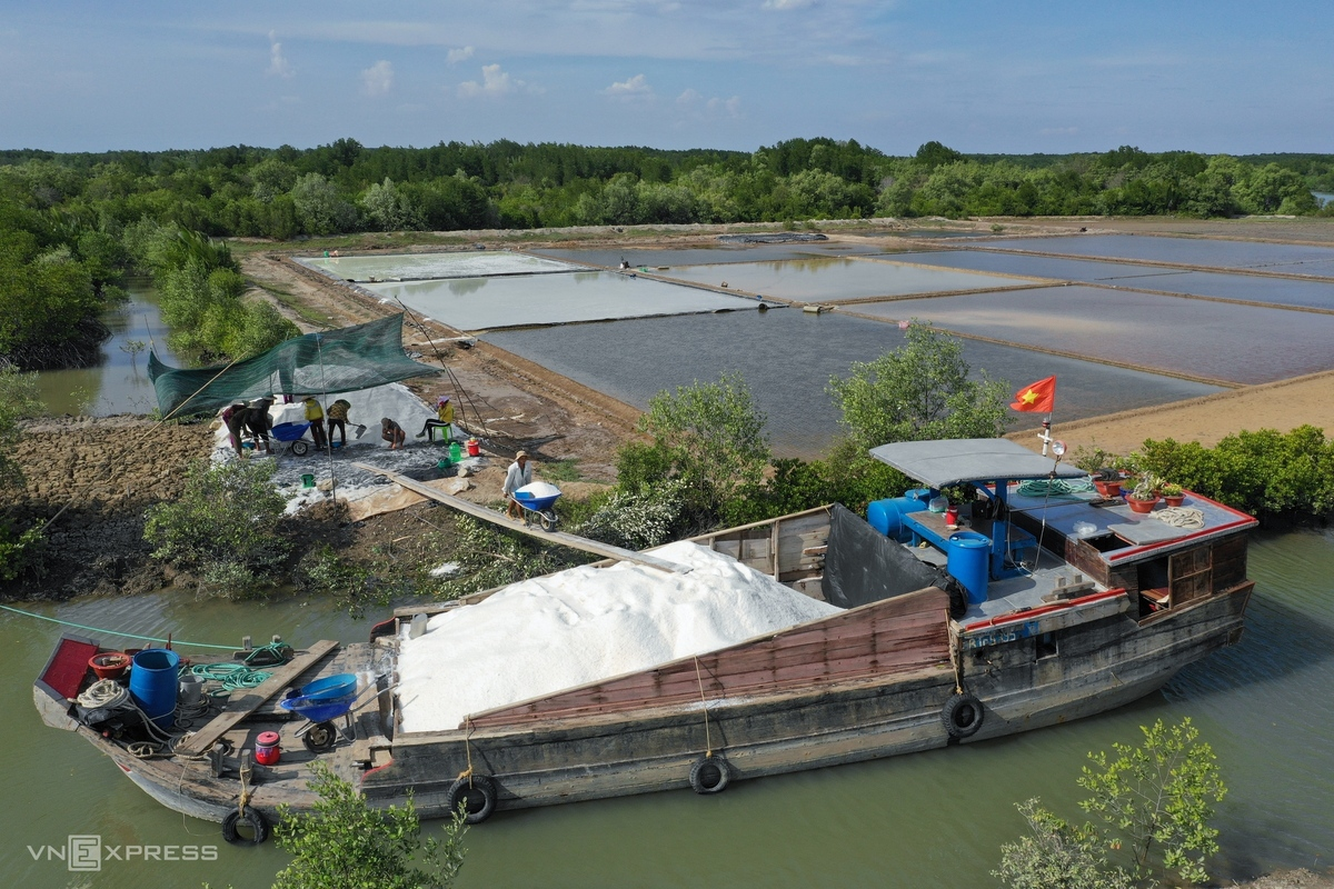 HCMC's island commune overwhelmed in bustling ambiance in salt-harvesting season