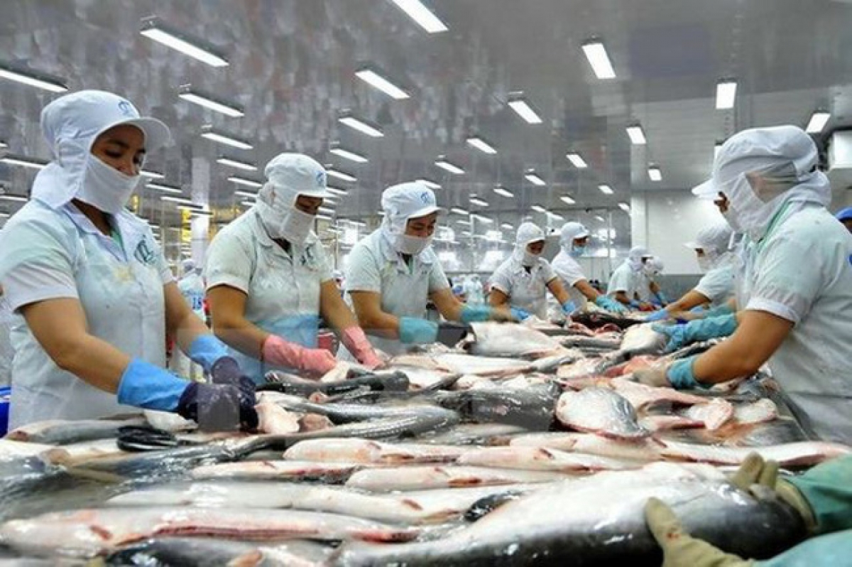 Vietnam's Pangasius exports increase by 0.6% in first quarter of 2021