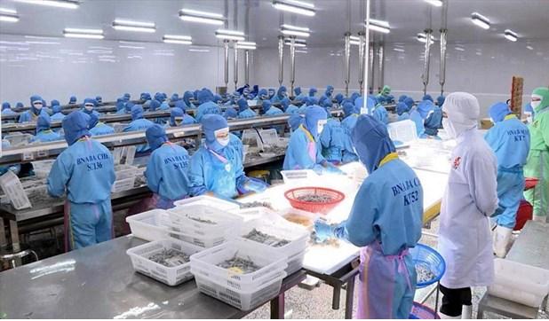 Vietnam's exports to EU reach nearly $5 billion thanks to EVFTA