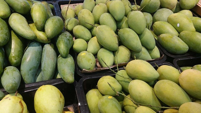 Vietnam emerges as world's 13th largest mango producer