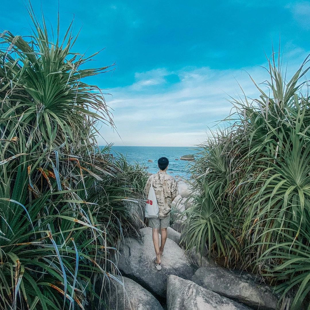 Most attractive egg stone beaches in Vietnam