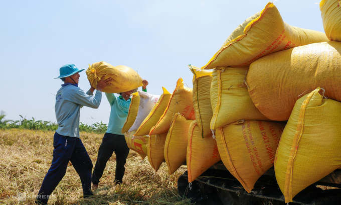 Philippines becomes Vietnam's largest rice importer