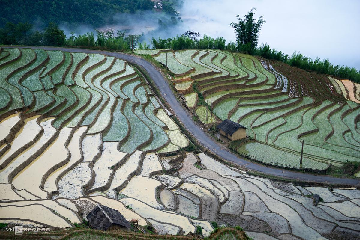 Bat Xat terraced fields mesmerizing in watery season