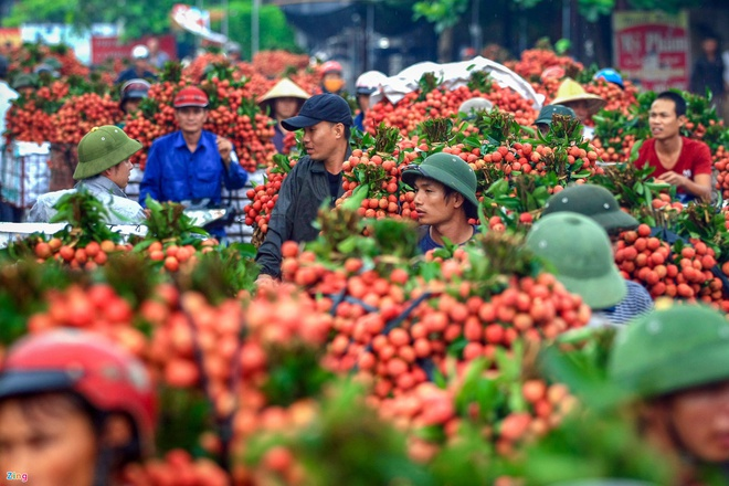100 tonnes of Vietnamese lychees to be exported to Australia