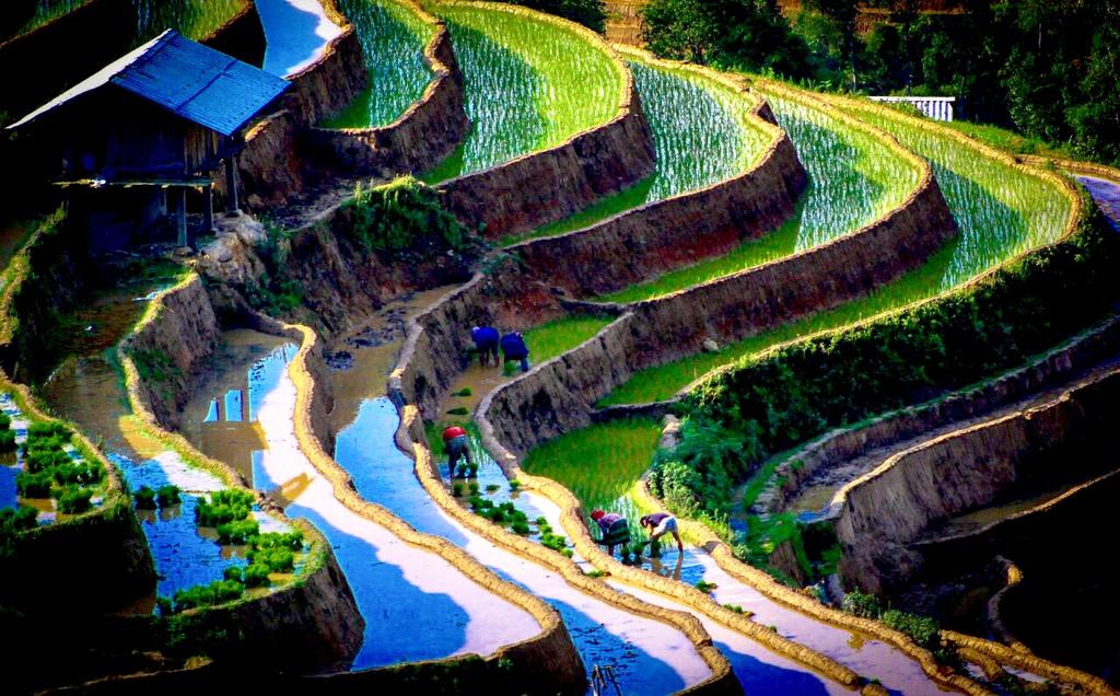 exploring splendid and rich culture tu le valley