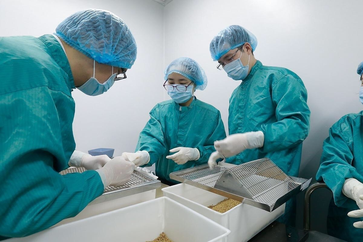 covid 19 vaccines available soon are made in vietnam