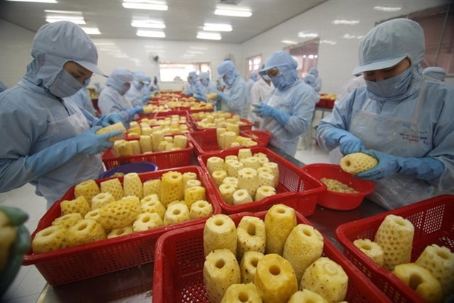 Vietnam's agricultural product exports witness robust growth