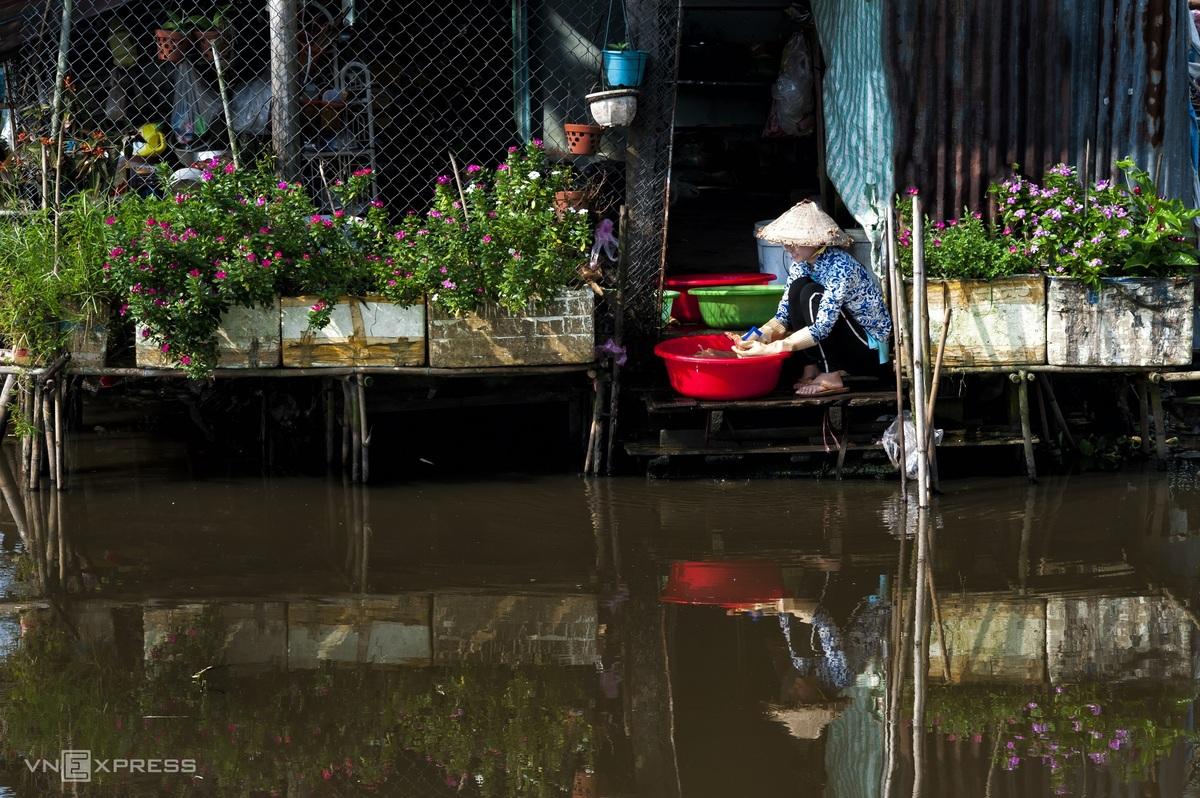 A glimpse into Hau Giang's peaceful countryside