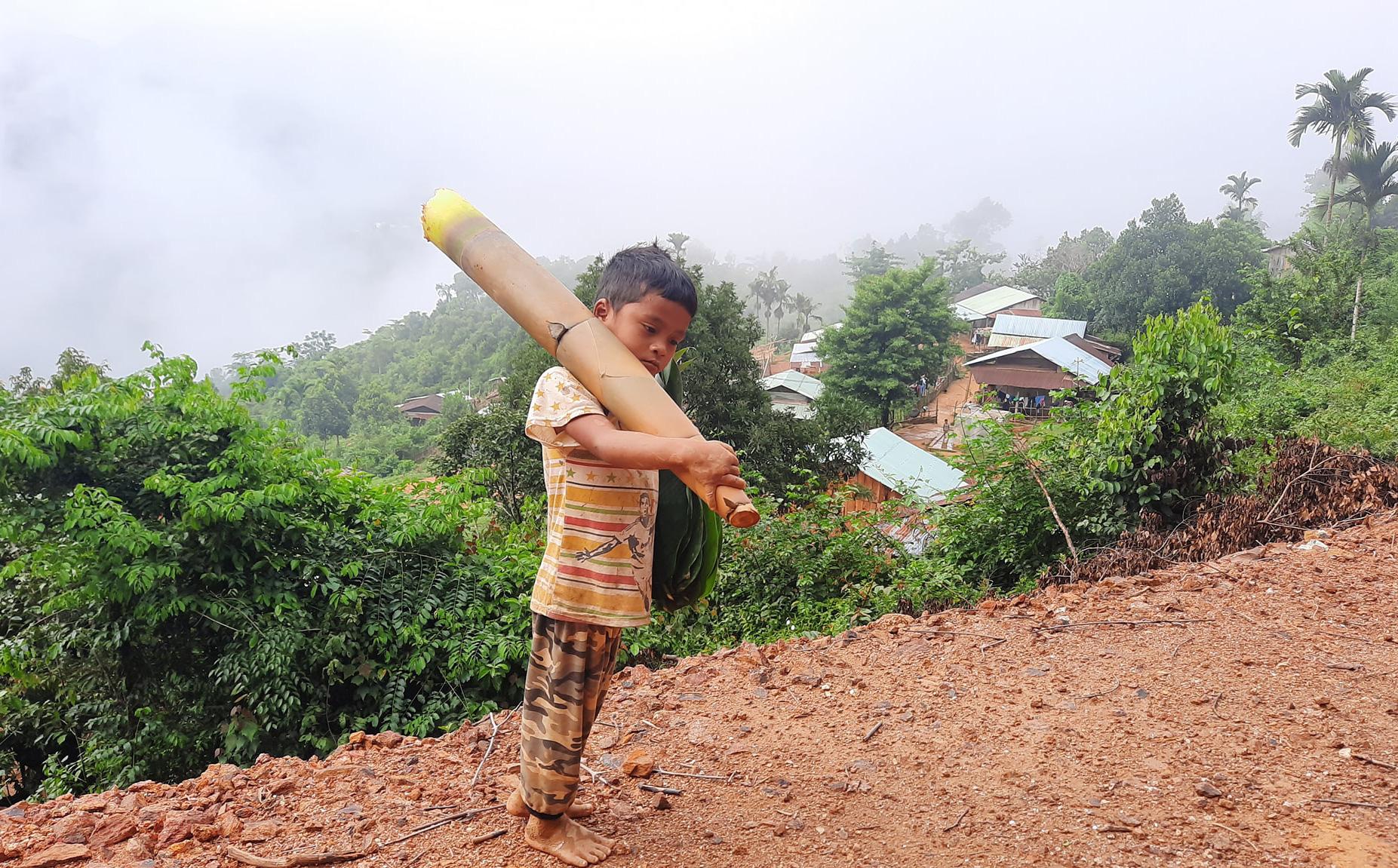 Vietnamese boy carrying forest bamboo shoot to support Da Nang, COVID 19 hotspot