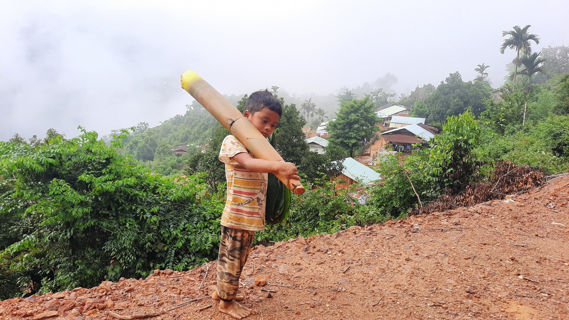 vietnamese boy carrying forest bamboo shoot to support da nang covid 19 hotspot