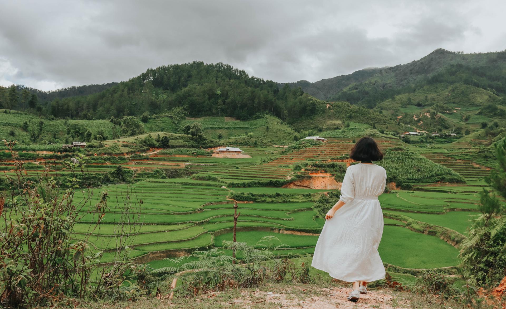 sublime verdant terraced fields in northwestern vietnam