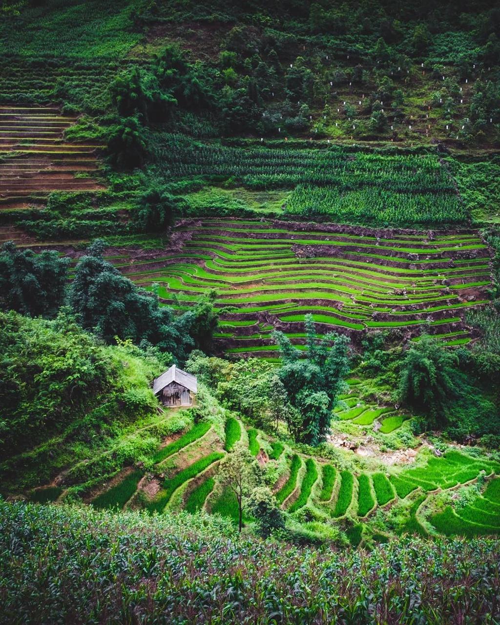 Four captivating valleys in Vietnam