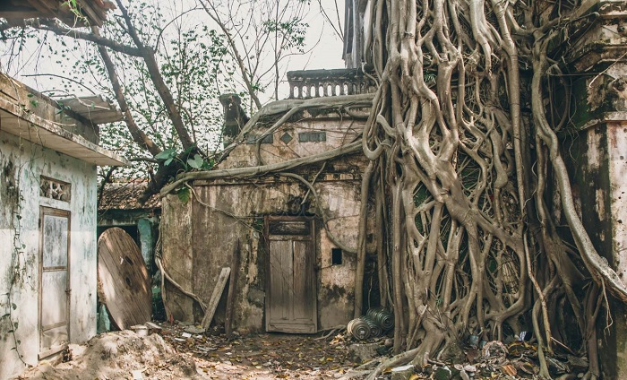 mysterious hues of abandoned architectures in vietnam