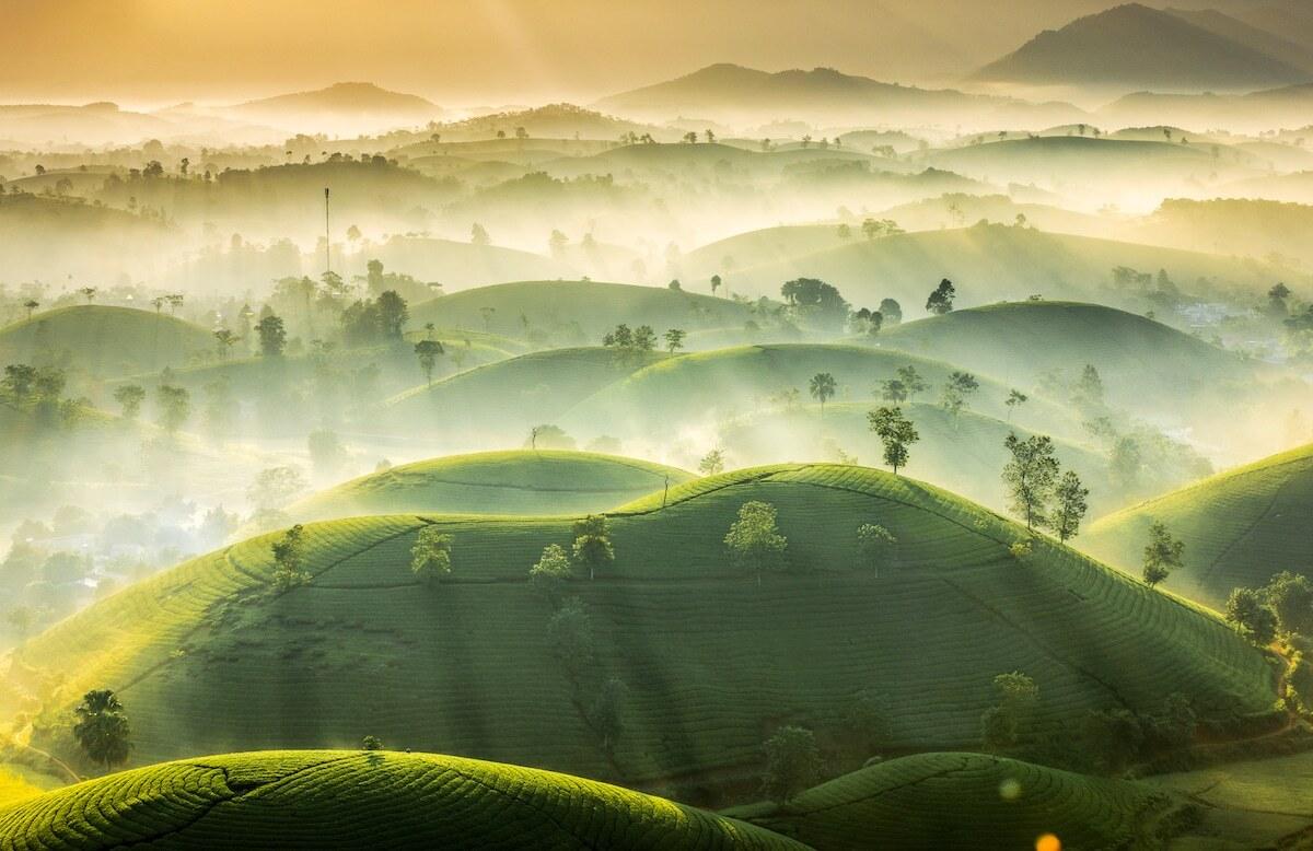 Vietnamese photographer wins international photo contest