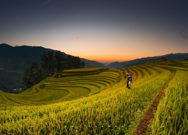 Mu Cang Chai, an ideal place to admire milky way