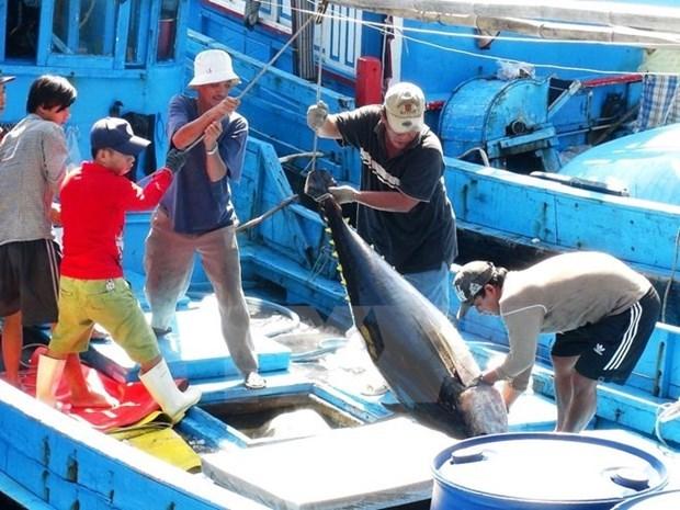 vietnams tuna exports to italy enjoy record increase in september
