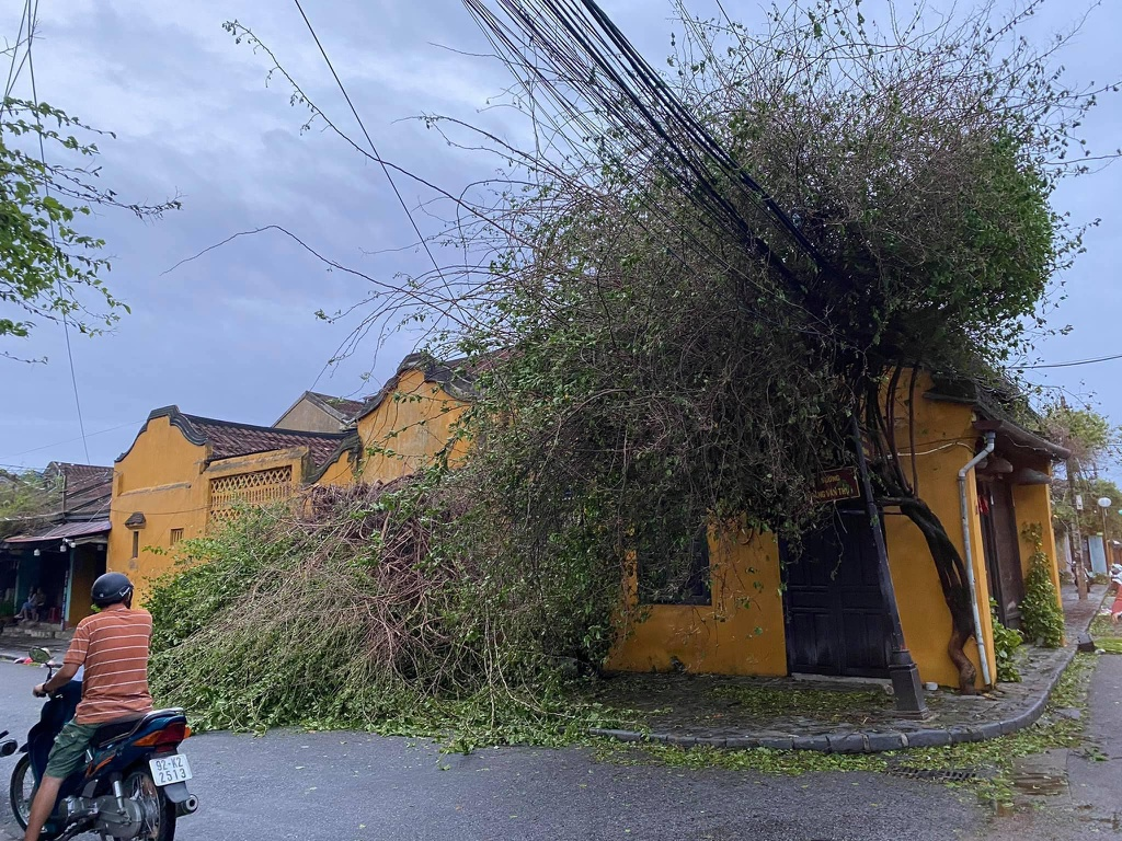 Hoi An ancient town wrecked after storm Molave