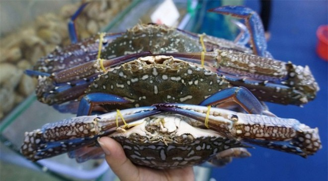 vietnams crab exports to china skyrocket in first nine months of 2020