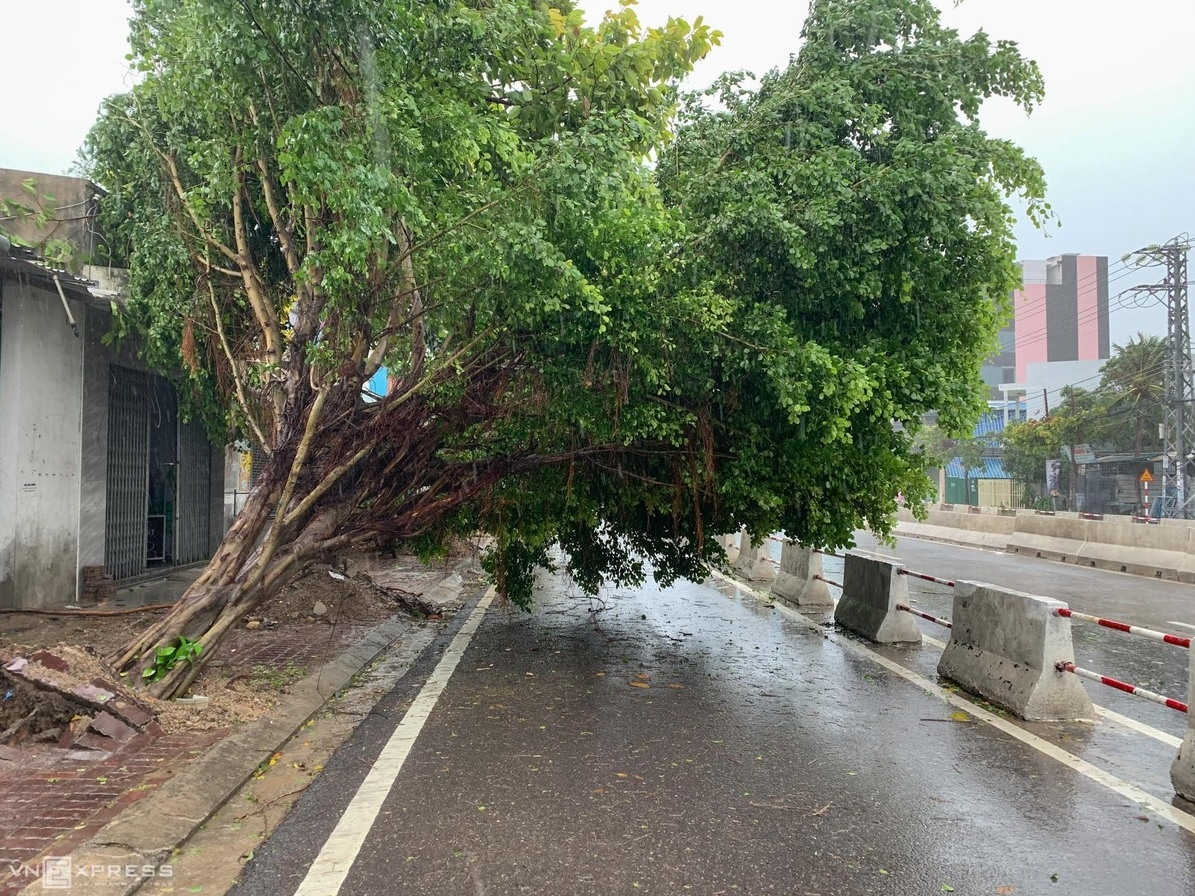 Storm Etau kills two people, blows off house roofs  in central Vietnam