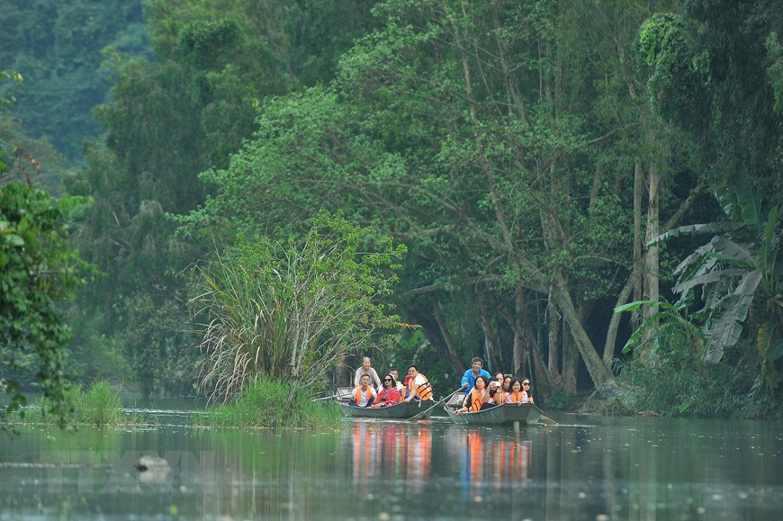 thung nham bird park an attractive ecotourism site in northern vietnam