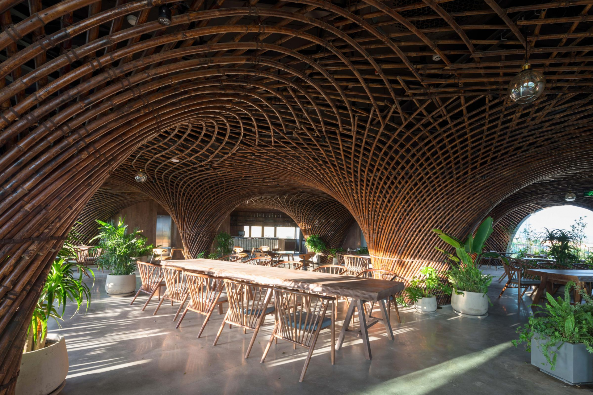 coffee shop in vietnam wins intl architecture award