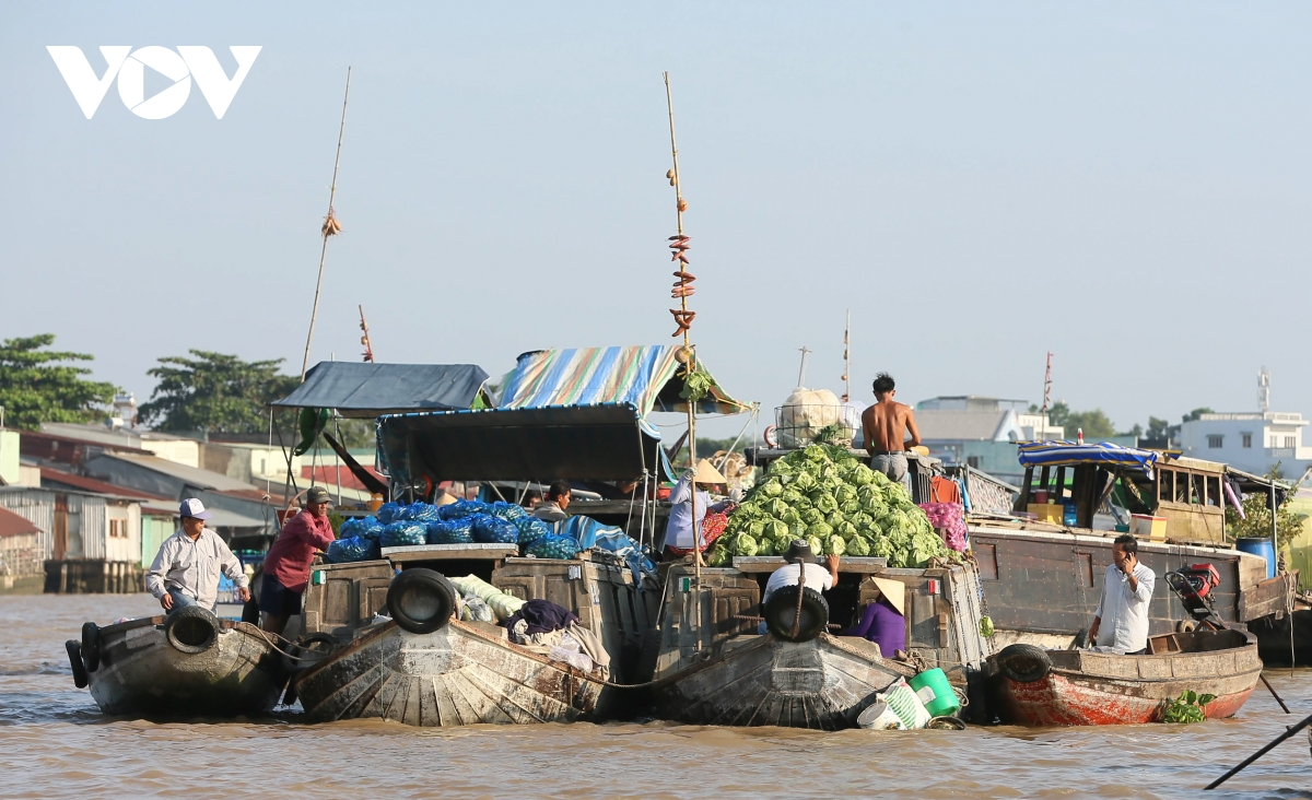 cai rang floating market a highlight of vietnams mekong delta