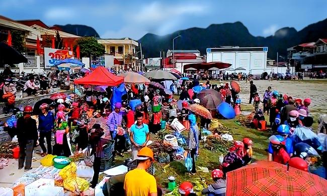 check in tourism digital transformation awakens lai chaus treasure