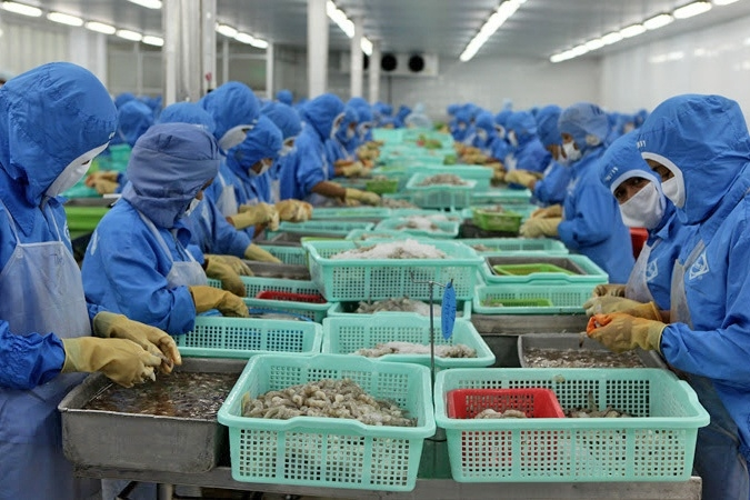 Vietnam's shrimp exports expected to increase by more than 12% in 2020