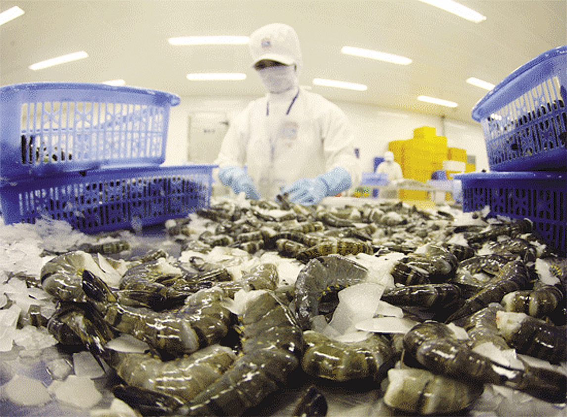 vietnams shrimp exports expected to increase by more than 12 in 2020