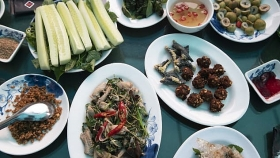 foodie thrill ride to le mat village for exotic menu of snake cnn suggests