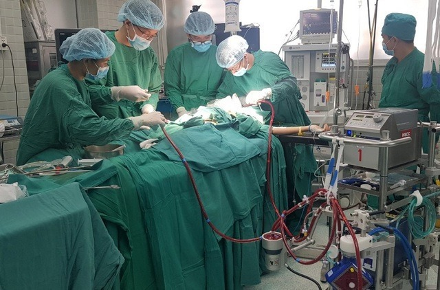 vietnam news today two vietnamese volunteered to donate lungs to critical british covid 19 patient