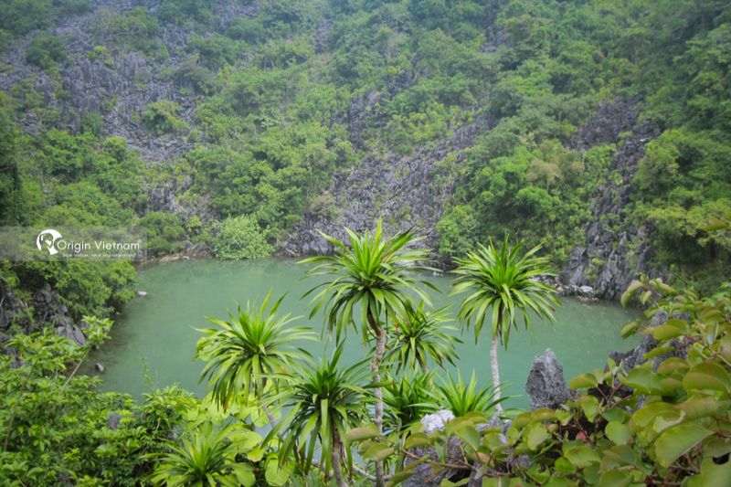 exploring bai tu long national park the untouched and newly emerged summer paradise