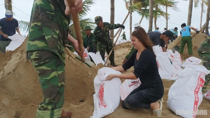 foreign visitors join hands with vietnamese to pile up ring dyke before storm in hoian