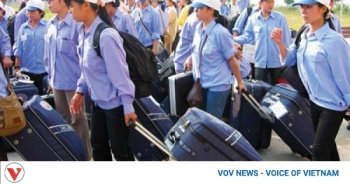 vietnamese labourers to enjoy greater protection when working abroad