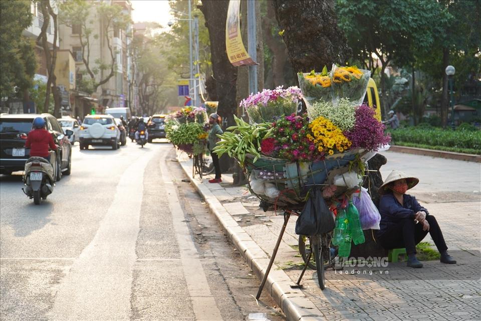 0713-lily-blooming-season-in-hanoi