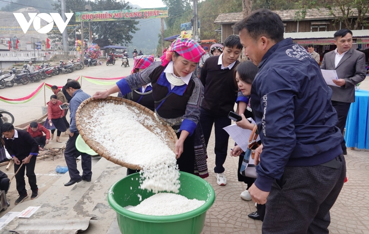 Unique Vietnamese glutinous rice dumpling making contest in northern Vietnam