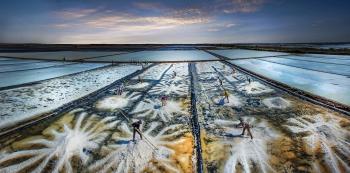 Vietnam news today (January 11): Salt-making named a national treasure