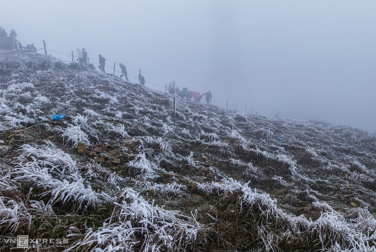 In Lang Son, things got frosted up at the top of Mau Son from January 8. The temperature stays at minus 2 or minus 3 degrees Celcius in the last two days. Since this year's winter comes, this is the first time Lang Son puts on such a frosty coat (Photo: VNE)