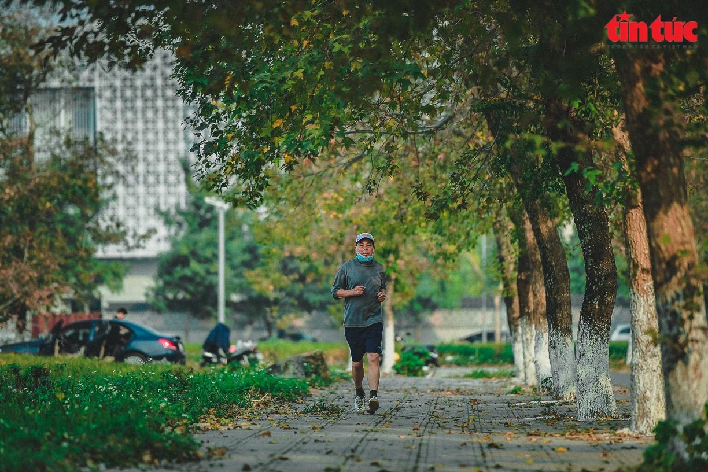 Splendid red maple leaves 'warm up' Hanoi's cold days