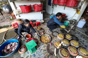 northern vietnam village busy braising thousands of fish pots as tet draws near