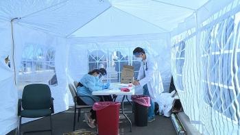 overseas vietnameses inspiring stories during pandemic time
